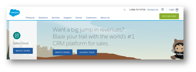 SalesForce homepage screen